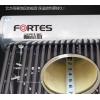 福特斯太阳能热水器家用全自动一体新型智能配件真空管农村太空能